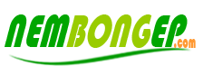 Nệm bông ép của Everon, Everhome, Edena, Cuscino, Liên Á, Vạn Thành, Kim Cương giá rẻ tại TPHCM. Đại lý khuyến mãi nệm cao su, lò xo đến 40%